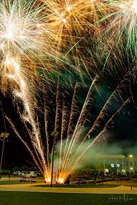 Sikh_Fireworks-27