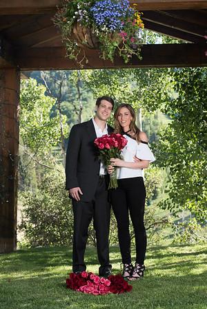 Aaron Gross surprise engagement-5041