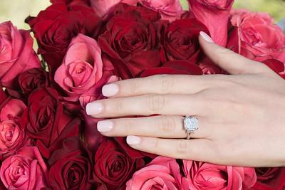 Aaron Gross surprise engagement-5049