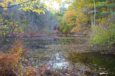 A pond off New Hampshire's Contoocook River.