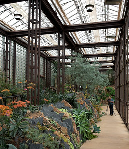 Part of the Sibley Center's plant exhibition area