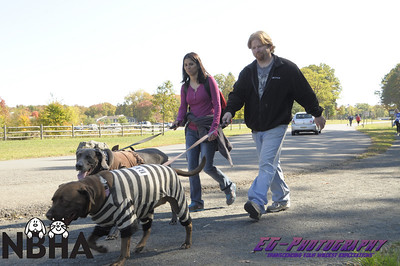 NBHA 10th Annual Dog Walk - Walk Photos