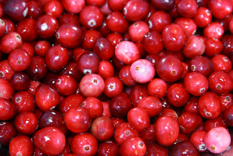 Preparing Grandma's Cranberry relish! Cranberry background.