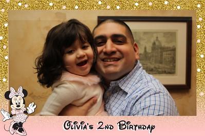 Olivia's 2nd Birthday