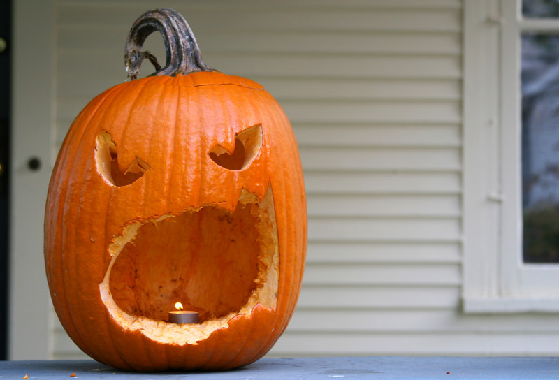 A rogue squirrel made fast work of this jack-o-lantern, but the end result? Rather horrific!