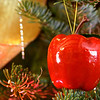 A selection of Christmas ornaments. Happy holidays! Christmas apple!
