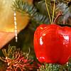 A selection of Christmas ornaments. Happy holidays! Christmas apple!