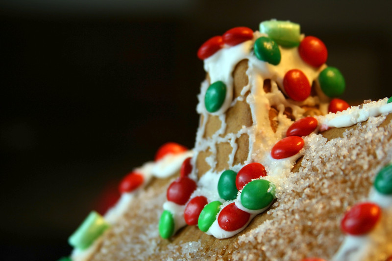 Roof of a homemade gingerbread house. Taste the fun!