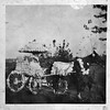 The G.A. Coleman Horse and Buggy in Sesqui-Centennial Parade (03354)