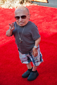 ANAHEIM, CA - JUNE 22: Actor Verne Troyer attends the premiere of Walt Disney Pictures' 'The Lone Ranger' at Disney California Adventure Park on Saturday, June 22, 2013 in Anaheim, California. (Photo by Tom Sorensen/Moovieboy Pictures)