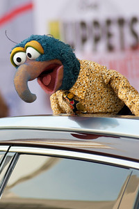 HOLLYWOOD, CA - MARCH 11: Muppet character Gonzo arrives for the premiere of Disney's 'Muppets Most Wanted' at the El Capitan Theatre on Tuesday March 11, 2014 in Hollywood, California. (Photo by Tom Sorensen/Moovieboy Pictures)