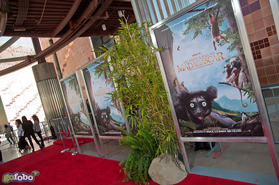 LOS ANGELES, CA - MARCH 29: Atmosphere at the premiere of 'Island Of Lemurs: Madagascar' at California Science Center on Saturday, March 29, 2014 in Los Angeles, California. (Photo by Tom Sorensen/Moovieboy Pictures)
