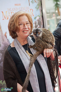 "LOS ANGELES, CA - MARCH 29: Dr Patricia C. Wright and a lemur named ""Taj"" arrive at the premiere of 'Island Of Lemurs: Madagascar' at California Science Center on Saturday, March 29, 2014 in Los Angeles, California. (Photo by Tom Sorensen/Moovieboy Pictures)"