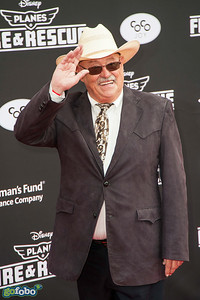HOLLYWOOD, CA - JULY 15: Actor Barry Corbin attends the premiere of Disney's 'Planes: Fire & Rescue' at the El Capitan Theatre on Tuesday July 15, 2014 in Hollywood, California. (Photo by Tom Sorensen/Moovieboy Pictures)