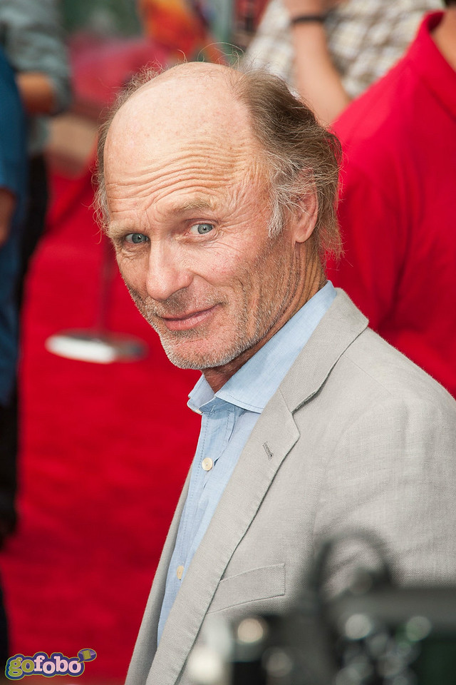 HOLLYWOOD, CA - JULY 15: Actor Ed Harris attends the premiere of Disney's 'Planes: Fire & Rescue' at the El Capitan Theatre on Tuesday July 15, 2014 in Hollywood, California. (Photo by Tom Sorensen/Moovieboy Pictures)