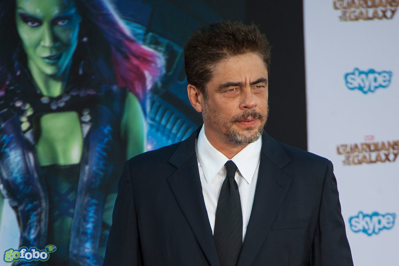HOLLYWOOD, CA - JULY 21: Actor Benicio Del Toro attends Marvel's 'Guardians Of The Galaxy' Los Angeles Premiere at the Dolby Theatre on Monday July 21, 2014 in Hollywood, California. (Photo by Tom Sorensen/Moovieboy Pictures)