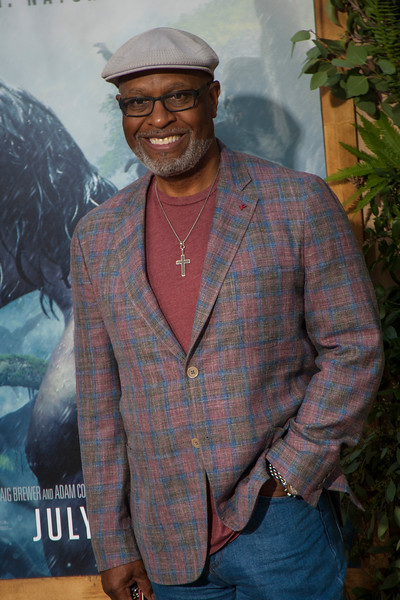 HOLLYWOOD, CA - JUNE 27: James Pickens Jr. attends the premiere of Warner Bros. Pictures' 'The Legend Of Tarzan' at Dolby Theatre on Monday June 27, 2016 in Hollywood, California. (Photo by Tom Sorensen/Mooviboy Pictures)