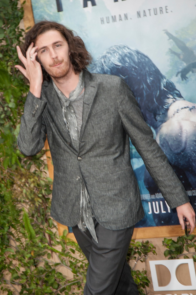 HOLLYWOOD, CA - JUNE 27: Hozier attends the premiere of Warner Bros. Pictures' 'The Legend Of Tarzan' at Dolby Theatre on Monday June 27, 2016 in Hollywood, California. (Photo by Tom Sorensen/Mooviboy Pictures)