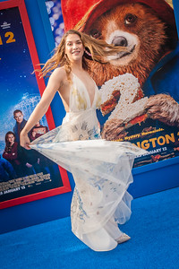 WESTWOOD, CA - JANUARY 06: Dancer Allison Holker attends the Los Angeles Premiere of 'Paddington 2' at Regency Village Theatre on Saturday January 6, 2018 in Westwood, California. (Photo by Tom Sorensen/Moovieboy Pictures)