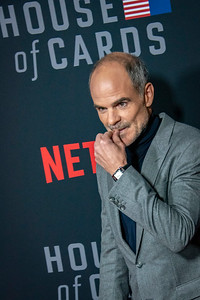 LOS ANGELES, CA - OCTOBER 22: Michael Kelly attends the Los Angeles premiere screening of Netflix's 'House Of Cards' Season 6 held at DGA Theater on Monday October 22, 2018 in Los Angeles, California. (Photo by Tom Sorensen/Moovieboy Pictures)