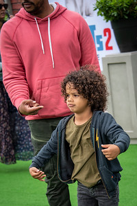 WESTWOOD, CALIFORNIA - JUNE 02: Donald Faison, CaCee Cobb, children Rocco and Wilder attend the Premiere of Universal Pictures' 'The Secret Life Of Pets 2' at Regency Village Theatre on Sunday, June 02, 2019 in Westwood, California. (Photo by Tom Sorensen/Moovieboy Pictures)