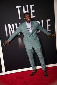 """HOLLYWOOD, CALIFORNIA - FEBRUARY 24: Aldis Hodge attends the Premiere of Universal Pictures' """"The Invisible Man"""" at TCL Chinese Theatre on Monday, February 24, 2020 in Hollywood, California. (Photo by Tom Sorensen/Moovieboy Pictures)"""