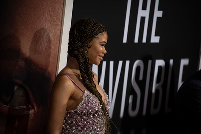 """HOLLYWOOD, CALIFORNIA - FEBRUARY 24: Storm Reid attends the Premiere of Universal Pictures' """"The Invisible Man"""" at TCL Chinese Theatre on Monday, February 24, 2020 in Hollywood, California. (Photo by Tom Sorensen/Moovieboy Pictures)"""