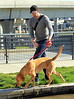 Non-Exclusive<br /> 2012 Apr 2 - John Krasinksi takes his dog for a rest break in NYC. Photo Credit Jackson Lee