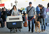 Non-Exclusive<br /> 2012 Apr 2 - John Krasinksi and Emily Blunt handle their dog and huge dog cage at JFK Airport in NYC. Photo Credit Jackson Lee