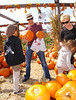 28 Sept 2009 - Hugh Jackman and Deborra-Lee Furness take their kids Ava Eliot and Oscar to Silverman's Country Market to pick pumpkins in Easton, Ct.  Photo Credit Jackson Lee