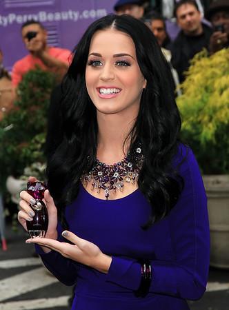 2010-11-16 - Blake Lively and Penn Badgley, Katy Perry, Kourtney Kardashian, Mason, and Scott Disick - jacksonleephoto