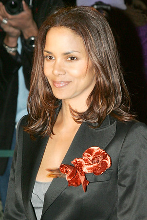 10 Jan 2006 - New York, NY - Halle Barry at National Board of Review Awards Ceremony held at Tavern on the Green in NYC.   Photo Credit Jackson Lee/Admedia