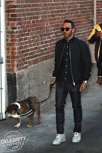 Lewis Hamilton Takes Bulldog For A Walk In Hollywood