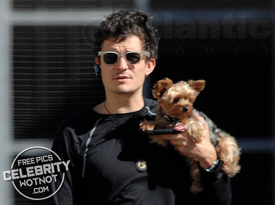 Orlando Bloom + Puppy = Adorable!