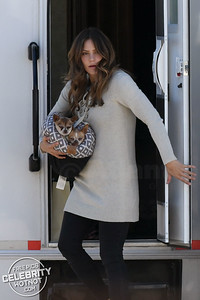 EXC: Puppy Love! Katharine McPhee Carries Her Two Sleeping Chihuahuas In Their Basket