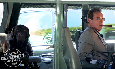 Arnold Schwarzenegger Smoking a Cigar Wearing Cool Sunglasses, LA