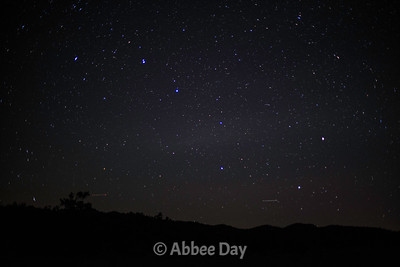 Constellations and Night Sky