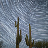 Star trails over the Arizona desert