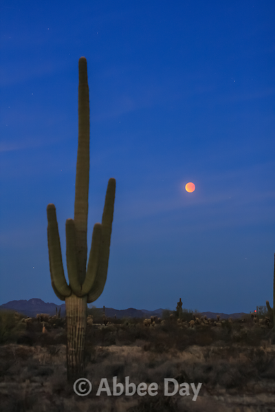 Blood Moon setting