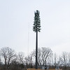 Cell Tower-2