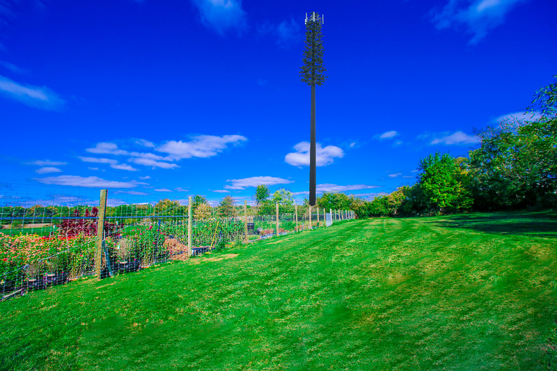 After Cell Tower-low res