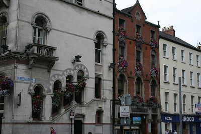 Flowers on the sides of buildings