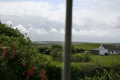 The view out the window of the cottage.