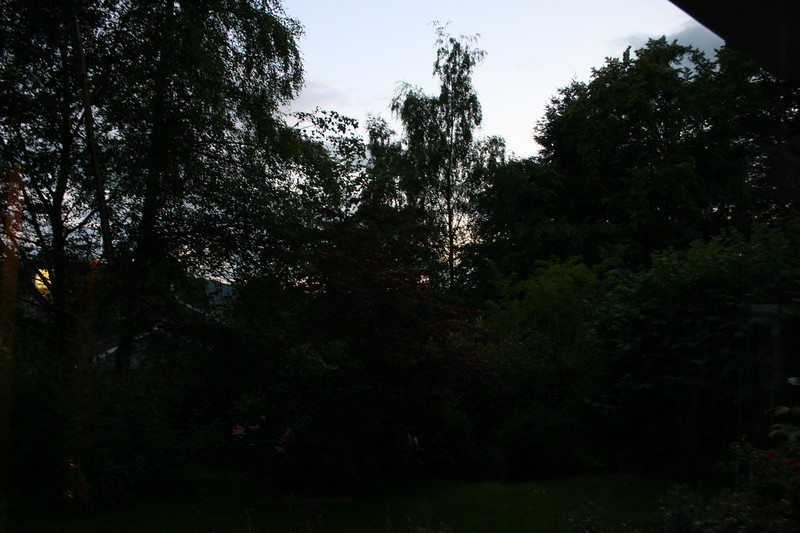 10:30 pm - It was even lighter than shown - you could still make out plants in the garden.