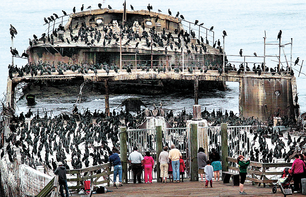 . Shmuel Thaler/Sentinel