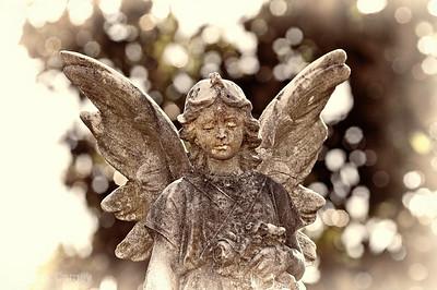 Angel of Paducah 3  b+w