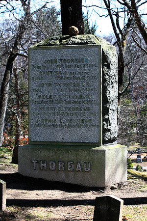 Thoreau Family Headstone