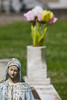 The Virgin Mary Flowers - St  Patricks Cemetery, Louisiana - Photo by Cindy Bonish
