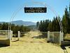 Acton Cemetery - 1