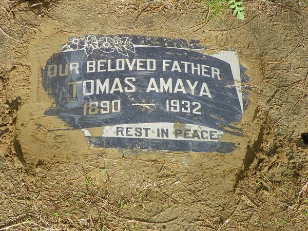 Tomas Amaya